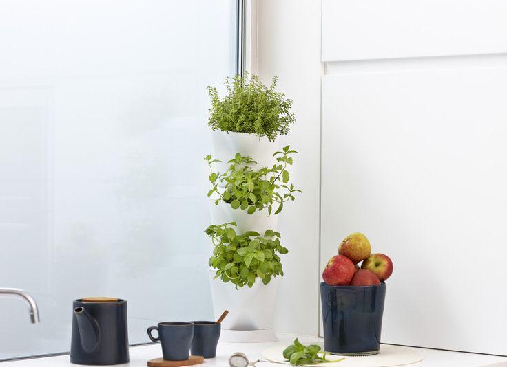 Minigarten Corner Jetzt Im Shop Kaufen! Wer Pflanzen Liebt, Keinen Garten  Und In Der Wohnung Wenig Platz Hat, Muss Sich Nicht Grämen:.