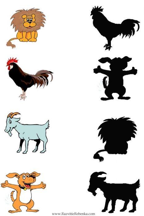 schaduw zoeken met kleuters / shadow matching preschool
