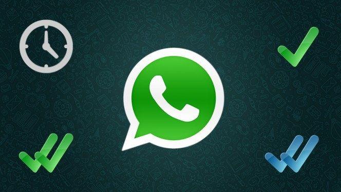 Vrijdag 5 november zorgde een nieuwe functie binnen Whatsapp voor heel wat ophef. Op social media ontstond er een hevige discussie over privacyschending