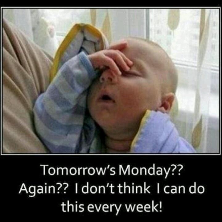 Funny Monday Work Meme : Monday work bits funny social media pinterest