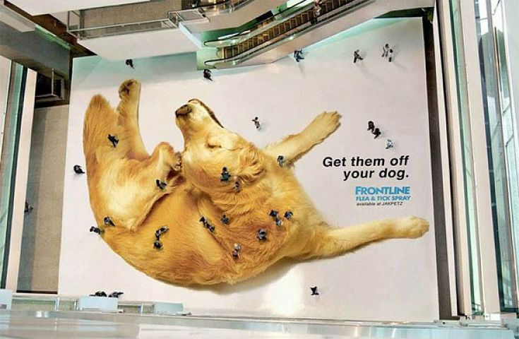 Aerial overhead shot of floor sticker ad with a giant dog that makes people look like fleas and ticks.