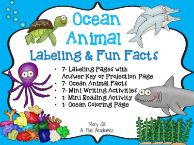 Aplusacademics From Ocean Animals Fun Facts For