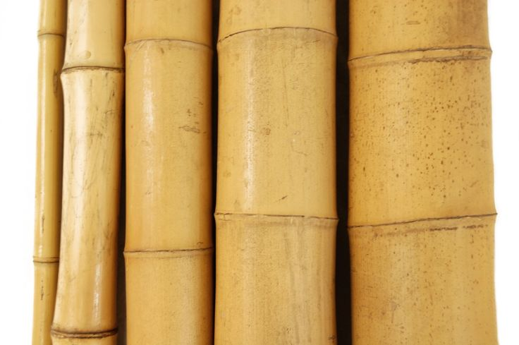 #Natural Tonkin and Moso #bamboopoles and bamboo sticks are commercial grade with uncompromising quality. These bamboo poles and bamboo sticks can be used as a decorative element for indoor and outdoor projects by adding a calming, #natural presence to your Zen space.