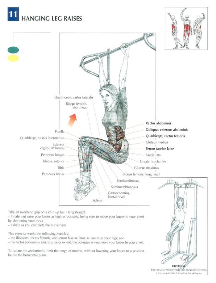 1000  images about exercise  on pinterest