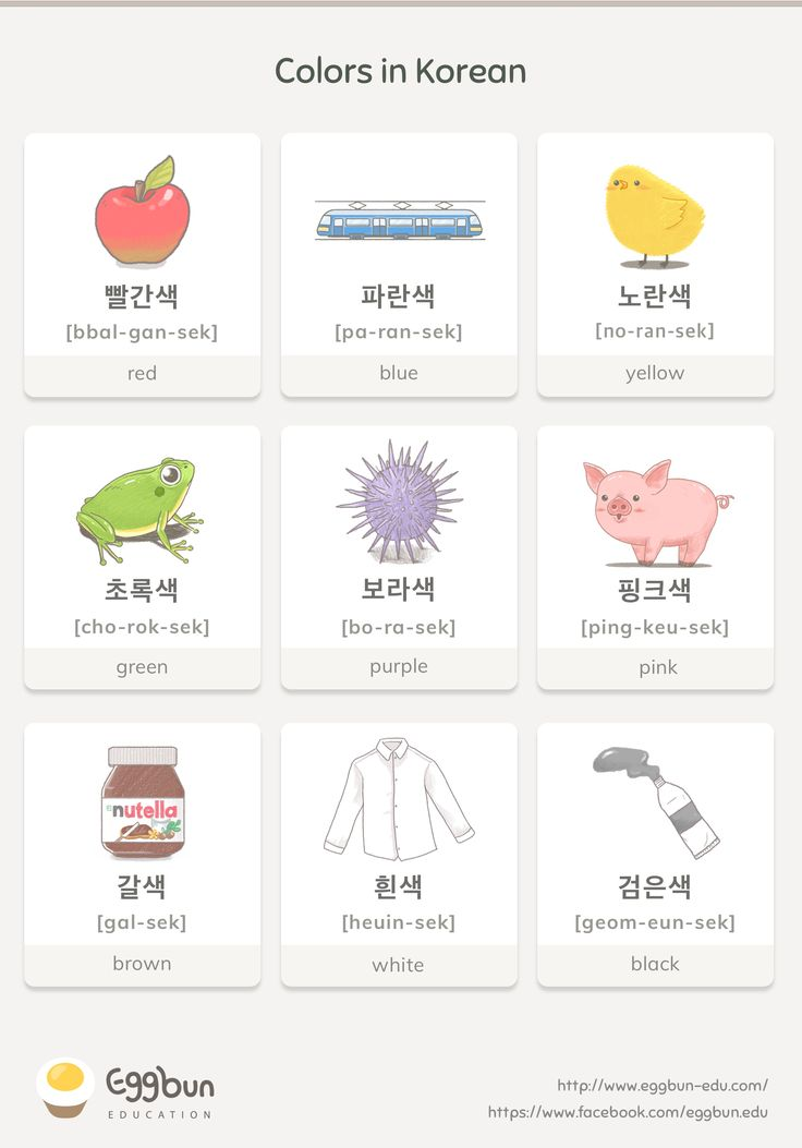 Colors in Korean Chat to Learn Korean with Eggbun!