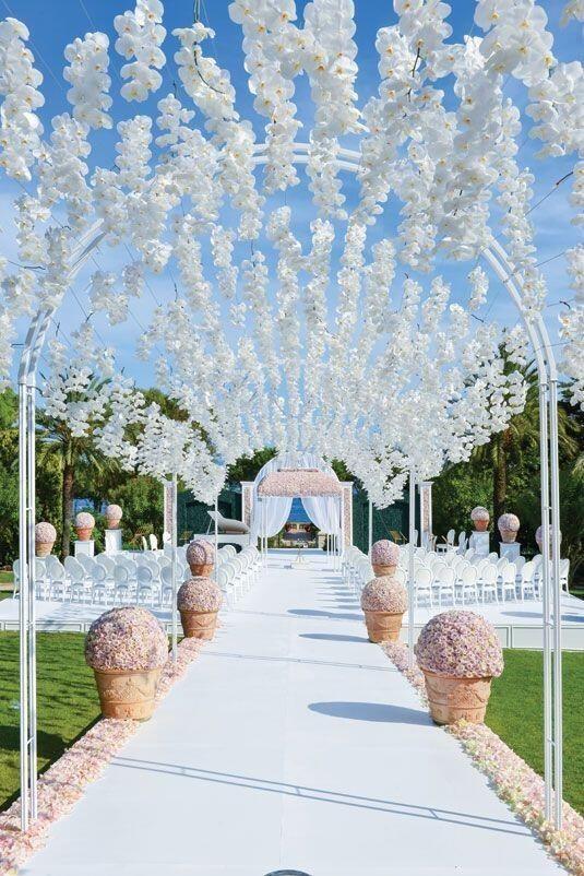 Wedding flower idea: orchid canopy r pic.twitter.com/QsNrUfc8U2