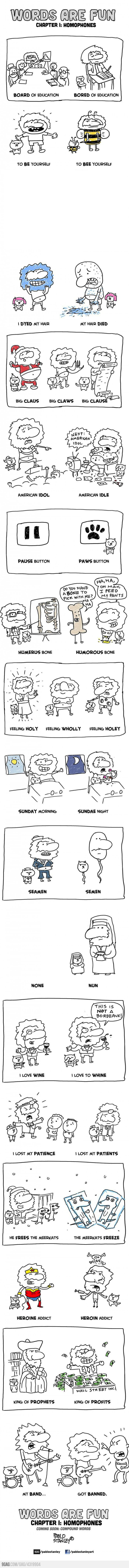 several homophones explained with funny cartoons