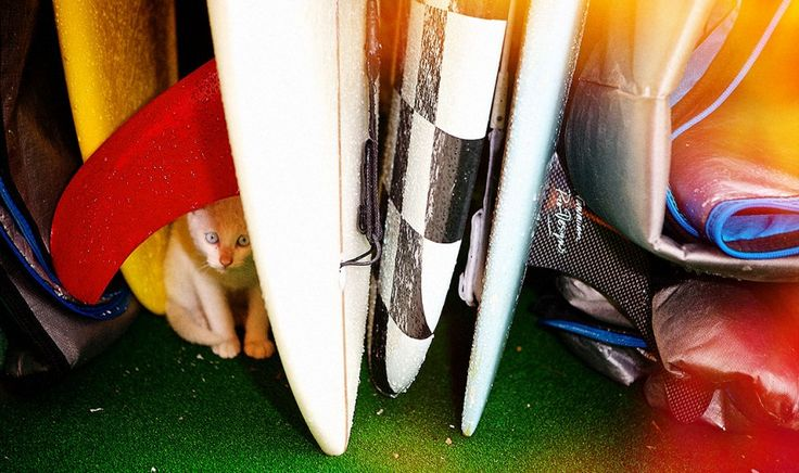 DMT Surf, korea sports photographer