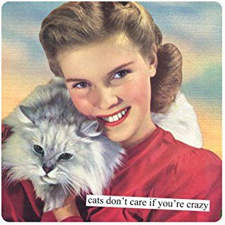 Anne Taintor Square Refrigerator Magnet - Cats Don't Care If You're Crazy