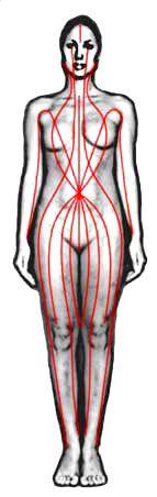 The Sen Line in Thai Massage