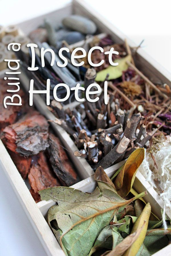 Insect hotels provide a place for insects to hibernate during the upcoming winter and are a way to encourage insect pollination in your yard.