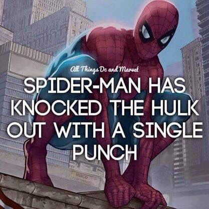 Spider-Man and Hulk -  fact ... Knocked the Hulk the F' OUT !!! °°