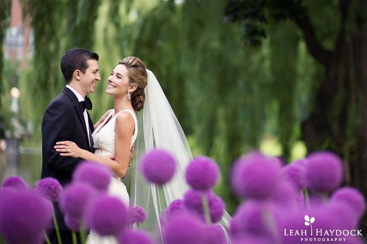 The Public Gardens in June. Love the purple alliums   Leah Haydock Photography