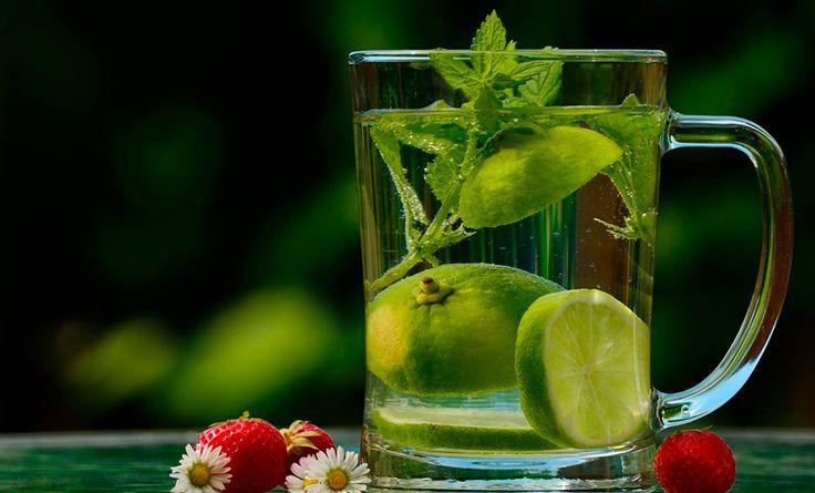 Cuidar adecuadamente nuestra vejiga puede ayudarnos a prevenir muchas enfermedades del sistema urinario. Conoce cómo mantener la vejiga sana