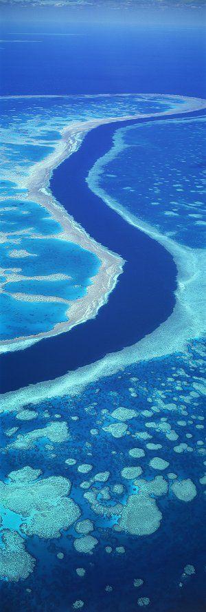 Blue Heaven, Great Barrier Reef, Australia.
