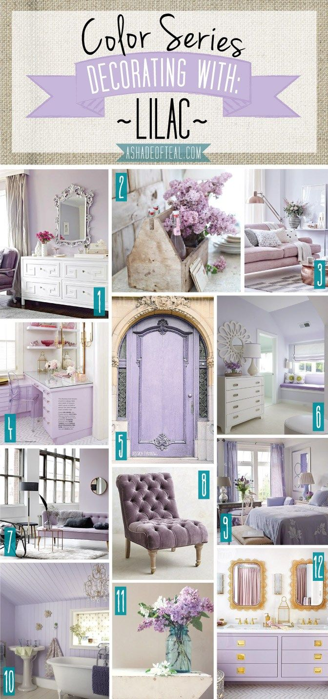 ColorSeries.Lilac