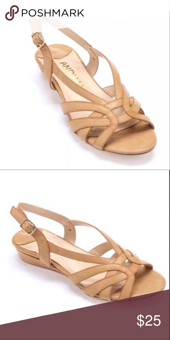 🆑CLEARANCE‼️ Wedge Sandals Shoes Slingbacks Women's Andiamo Ping Wedge Sandals Shoes Slingbacks NEW IN BOX Size 10 M Andiamo Shoes Sandals