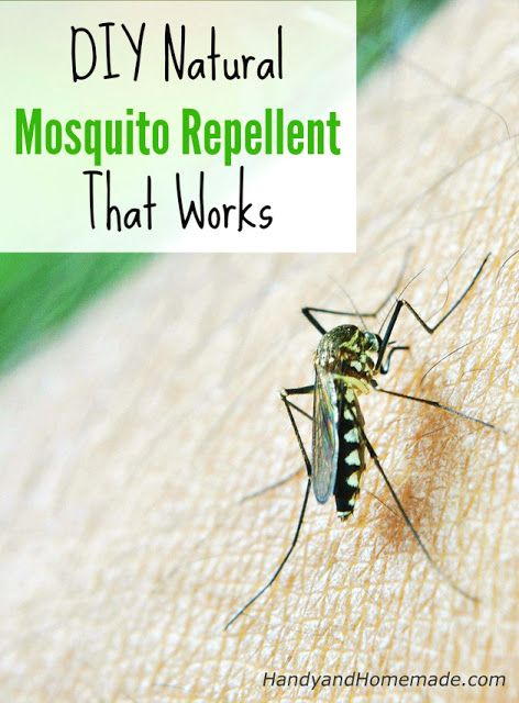 Diy Natural Mosquito Repellent Recipe That Works Handy