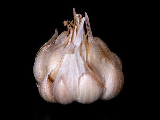 Smart Tip: Peel an Entire Head of Garlic in 10 Seconds Saveur