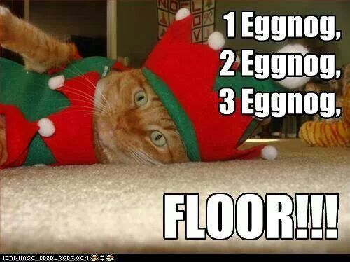 Funny Christmas Memes For Friends : 21 best eggnog images on pinterest christmas time funny animal