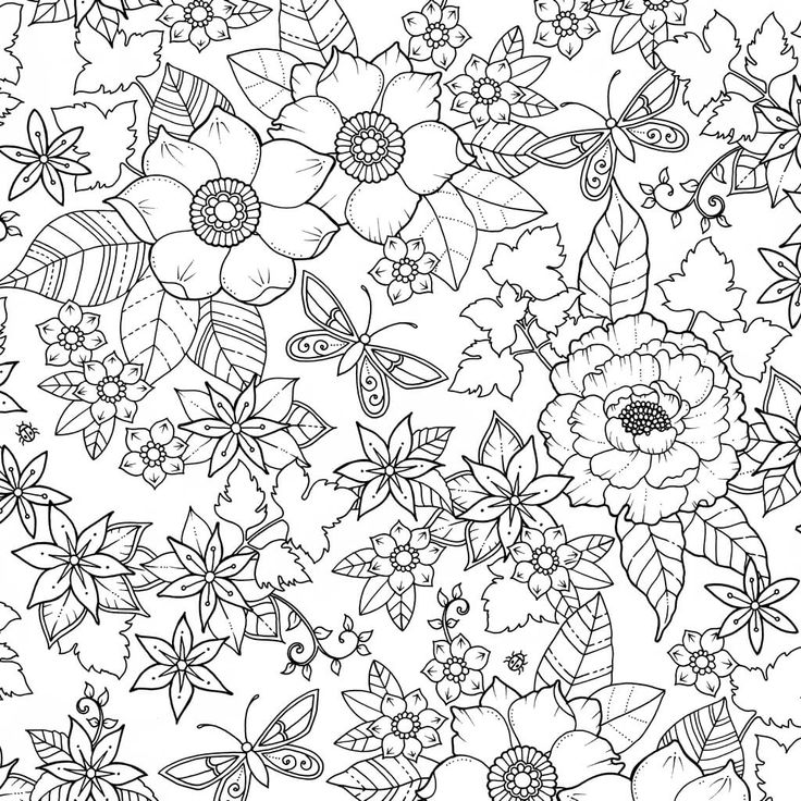 3 free Johanna Basford coloring pages