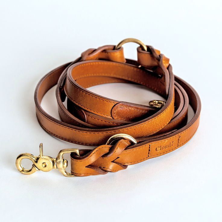 Cloud 7 Dog Leash HYDE PARK Cognac