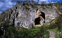 Yarrangobilly Caves - Kosciuszko National Park, New South Wales, Australia