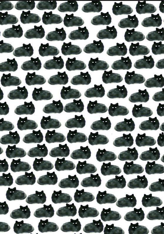 Gatos pretos <3 ~~