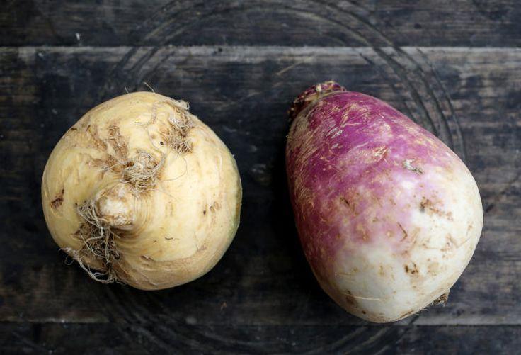 Links Kohlrübe, rechts Herbstrübe: ideal für Gemüsecarpaccio und als Salat-Gemüse, geraffelt und milchsauer eingelegt besonders reich an Vitamin B12. Die milchsaure Gärung ist die Einzige Konservierungsart, bei der sich die Inhaltsstoffe vermehren. Mehr dazu hier: http://www.nachrichten.at/oberoesterreich/hoamatland/G-riss-ums-G-mias;art160787,1697898 (Bild: Weihbold)