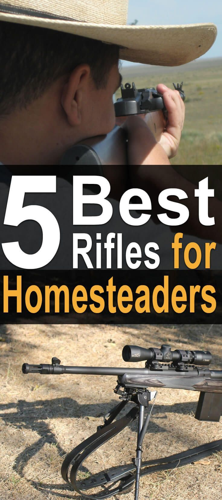 5 Best Rifles for Homesteaders. As a homesteader, you have to rely on tools each and every day. One of those tools is a firearm. It can be used for self-defense, for hunting, for protecting livestock, for target shooting, and for pest control, to name a few things. #homesteadsurvivalsite #firearm #Protection