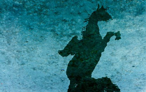 Horse Statue Reflection-  Salzburg, Austria.