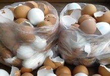 Kreativní nápady jak vytvořit z obyčejných vaječných skořápek překrásné dekorace do vaší domácnosti!