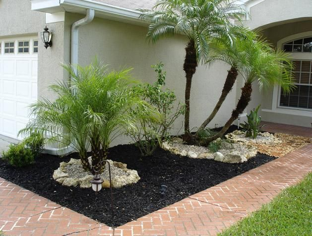 With Black Mulch - love this...wish we lived in a region that you could leave tropicals outside all year..maybe some potted ones??
