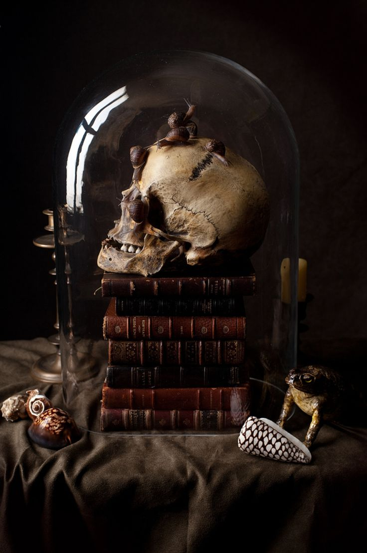 skull and books decoration. the snails are a bit much but otherwise this looks pretty cool