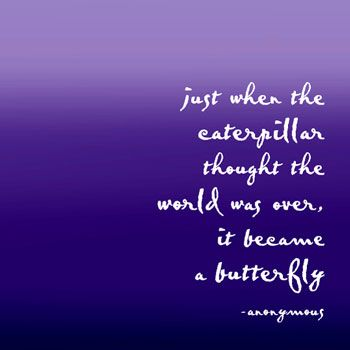 :): Sayings, Thoughts, Butterfly, Inspiration, Butterflies, Favorite Quotes, Things, Tattoo, Caterpillar Thought