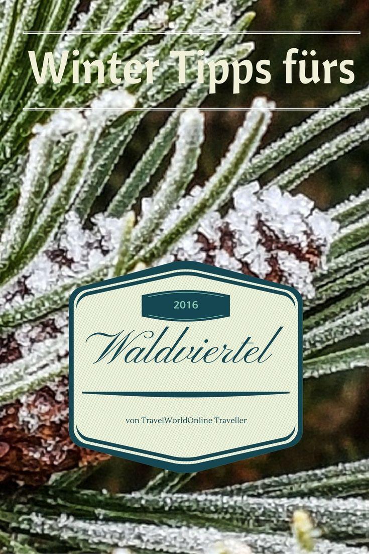 Kurzurlaub im Hotel Schwarz Alm im Advent  .. #winter #waldviertel #österreich #austria #wintertips #roadtrip