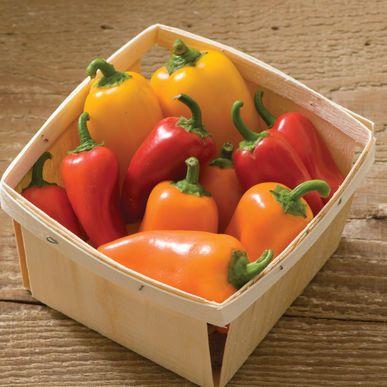 Lunchbox Pepper Mix ORGANIC Pepper Seeds (Capsicum annuum) + FREE Bonus 6 Variety Seed Pack - a $30 Value!