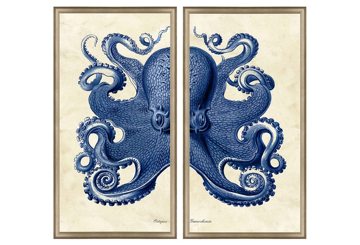 Bathroom art. Silver framed Octopus diptych.