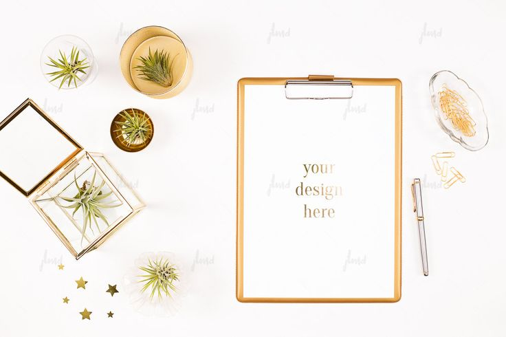 Styled clipboard with desk accessory and air plants - white negative space - blog, social media, branding and marketing - 0101 by JustLikeMyDesktop on Etsy