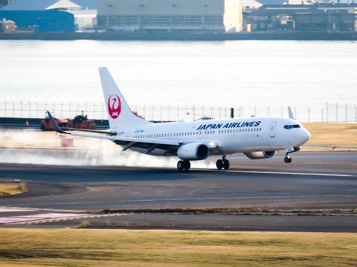 JAL B737 JA330J