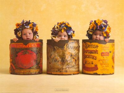 anne geddes - pansies
