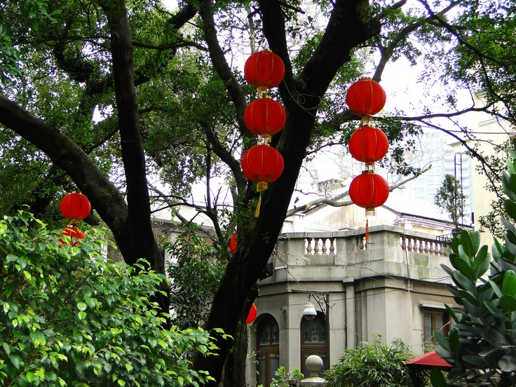Red lanterns in the trees just prior to Chinese New Year of 2010.  The Chinese do not celebrate birthdays the way we do in the West.  Everyone turns a year older on Chinese New Year and when a baby is born they are considered one not zero.