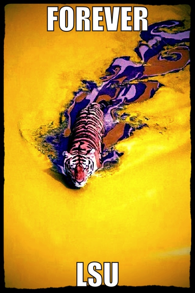 FOREVER LSU!! Who's ready for 2014 football?!!!