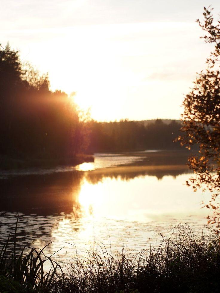 Ihan rauhassa - Pupulandia | Lily.fi