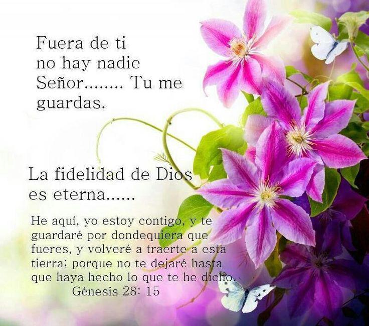 Versiculos De La Biblia De Animo: 1364 Best Images About D I O S ES A M O R On Pinterest