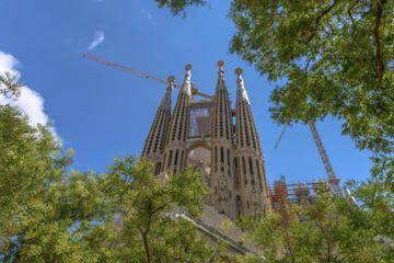Skip the Line: Barcelona Sagrada Familia Tour - Barcelona | Viator.  $38