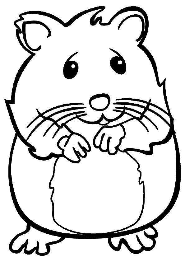 coloring page of a hamster - print coloring image preschool february pinterest