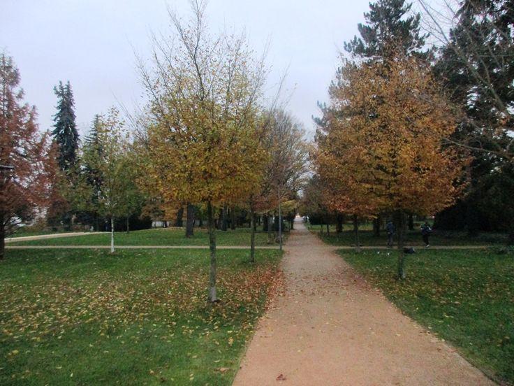 Park - Poděbrady - Česko