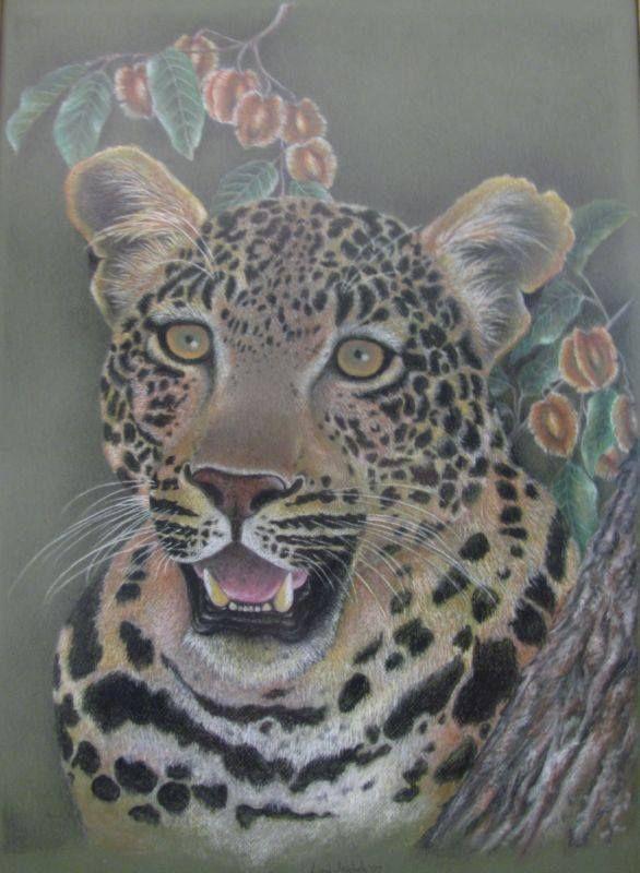 African Leopard by Landi-Michelle van den Berg. Pastel Drawing, 2007.