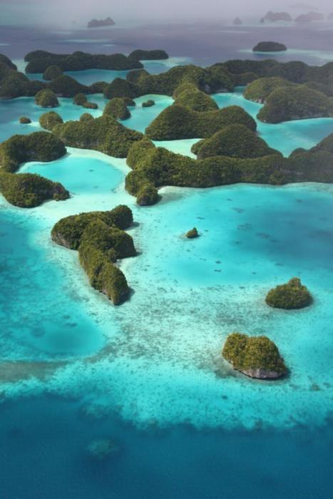 Palau Islands, South Pacific Ai ai... olha isso @Caca Ferreira...